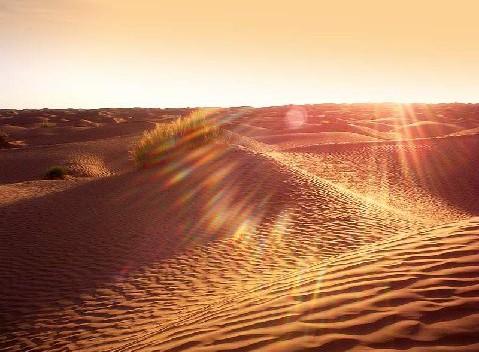 Rallye des Gazelles - les dunes