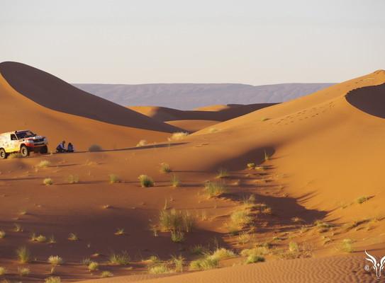 Rallye-gazelles-2015-cap-medina-7