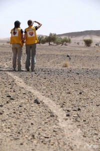 Rallye des gazelles 2017 - Dos gilets